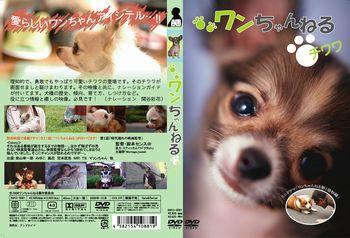 chiwawa_cs1.jpg